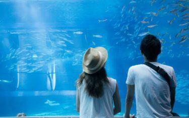 【大成功まで秒読み?!】彼氏との水族館デートで抑えておきたいポイントを紹介!